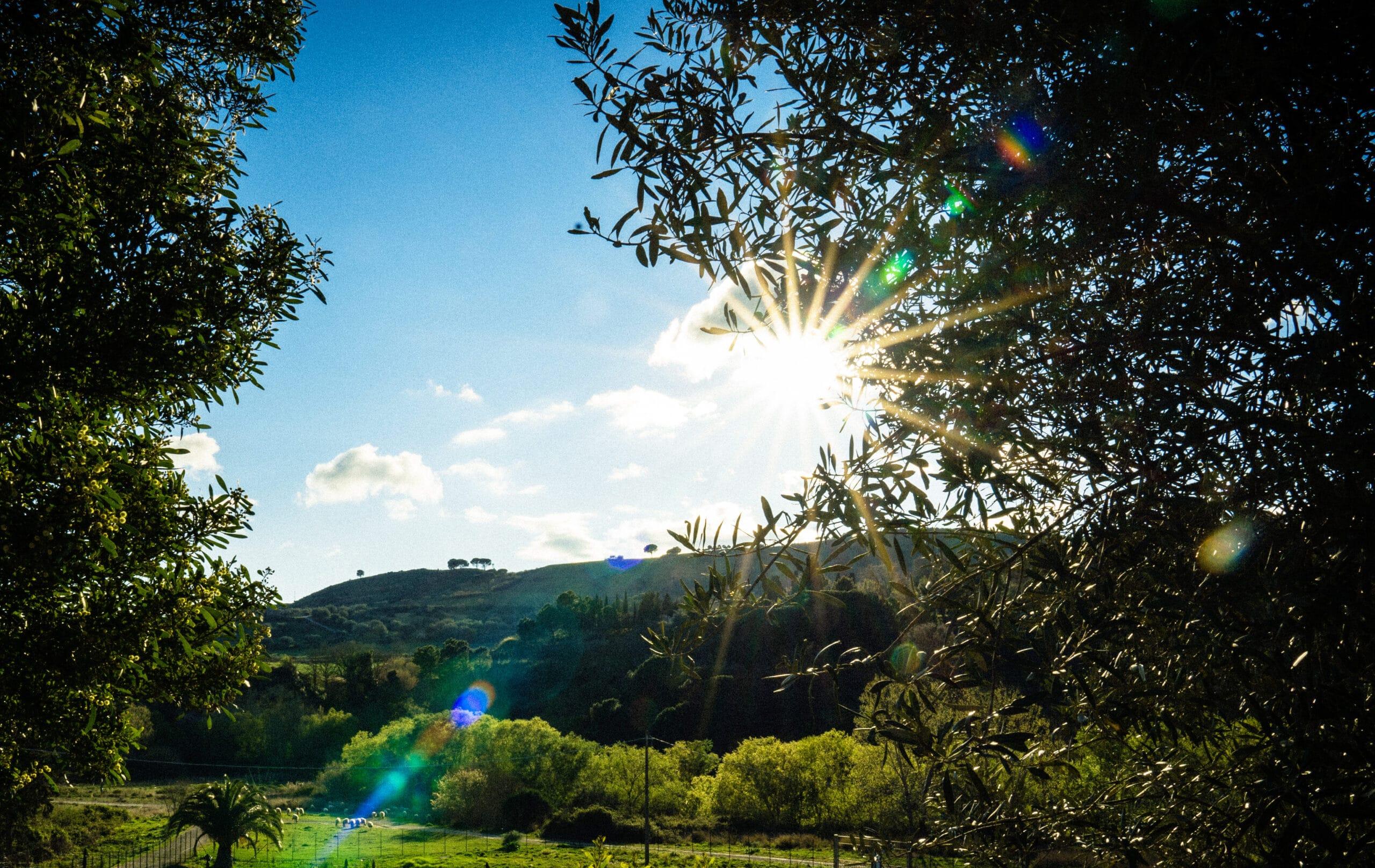 Blick über die sizilianische Landschaft